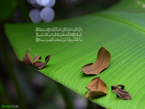 Al-Qur'an & Rahasia Angka